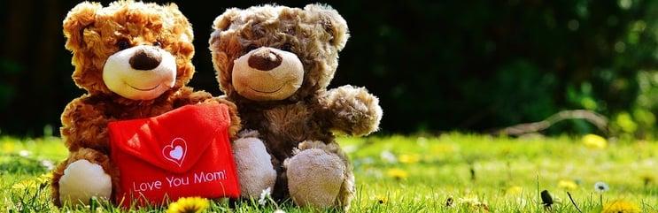 Teddybeer - header.jpg