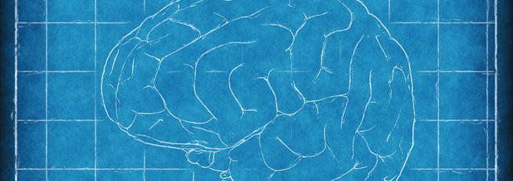 hersenen - banner.png